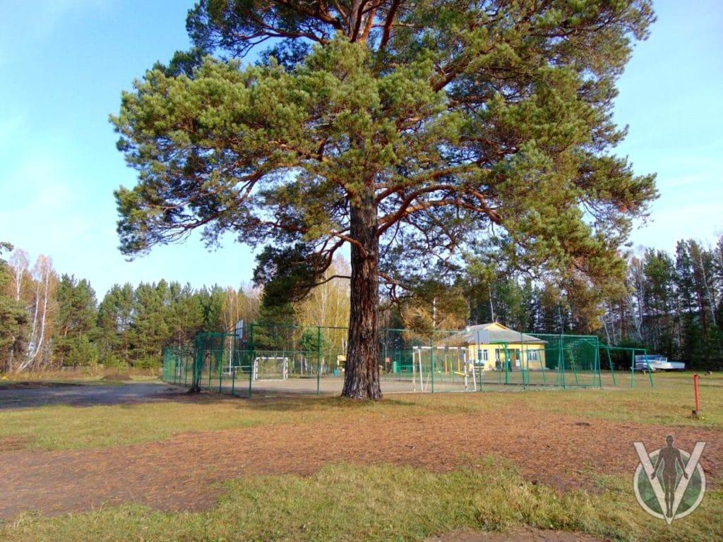 Реабилитационный центр в Красноярске 5